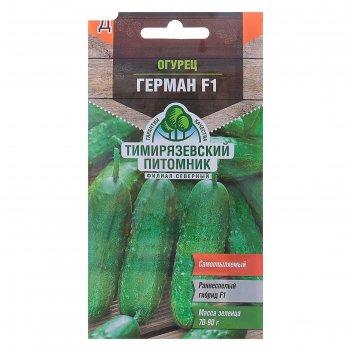 Семена огурец герман f1 партенокарпический, 7 шт