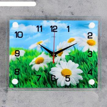 Часы настенные прямоугольные ромашки, 20х26 см