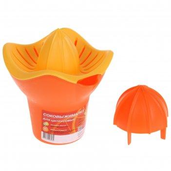 Соковыжималка для цитрусовых польза, цвет оранжевый