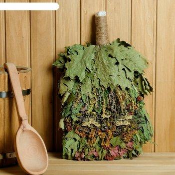 Веник для бани экстра из кавказского дуба с травами, в пакете на молнии