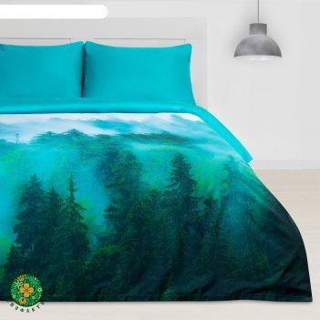 Постельное бельё этель евро туманный лес 200х217 см, 240х260 см, 50х70 см