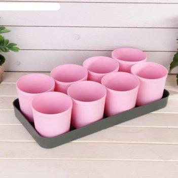 Набор для рассады: стаканы по 500 мл (8 шт.), поддон, цвет микс