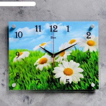 Часы настенные, серия: цветы, ромашки 30х40  см, микс
