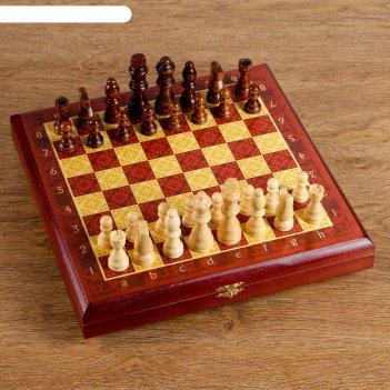 Шахматы малые бордо