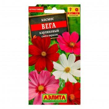 Семена цветов космос вега карликовый, смесь окрасок, о, 0,3 г