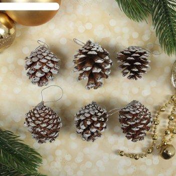 Набор природного декора волшебные шишки, набор 6 шт.