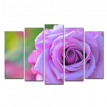 Модульная картина на подрамнике лиловая роза, 125x80 см
