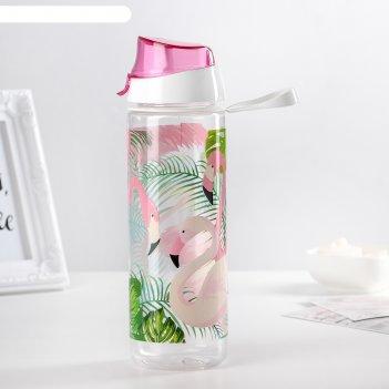 Бутылка 750 мл фламинго