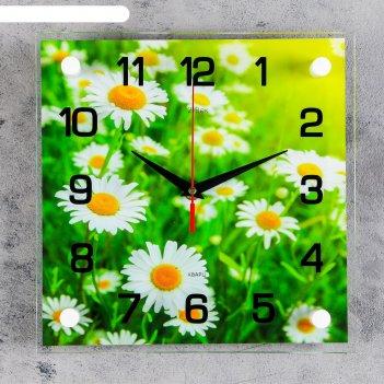 Часы настенные, серия: цветы, ромашки стекло 25х25  см, микс