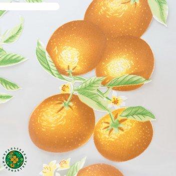 Тюль этель мандариновый рай без утяжелителя, ширина 250 см, высота 270 см