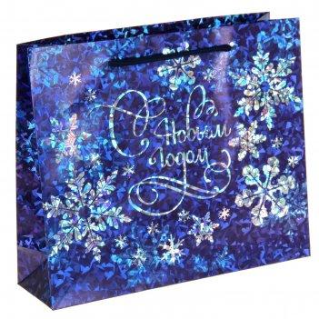 Пакет подарочный голография снежинки, 23 х27 см