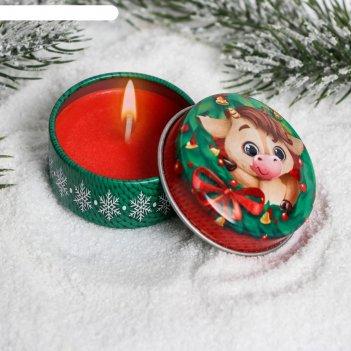 Свеча в жестяной баночке с новым годом!