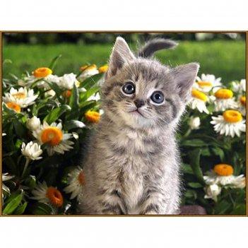 Алмазная мозаика послушный котёнок, 32 цвета