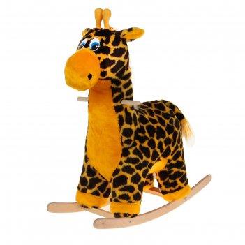Качалка жираф музыкальная