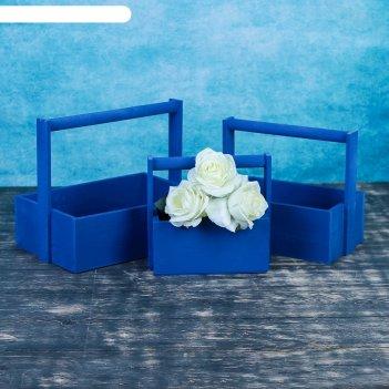 Набор кашпо деревянных подарочных элегант классик, 3 в 1, с ручкой, синий