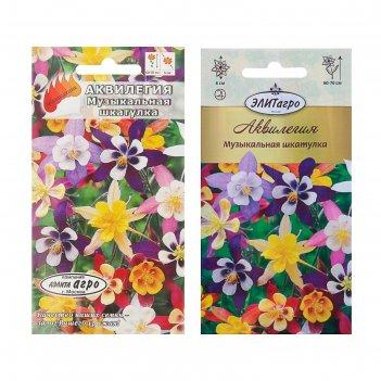 Семена цветов аквилегия музыкальная шкатулка смесь, мн, 0,1 г