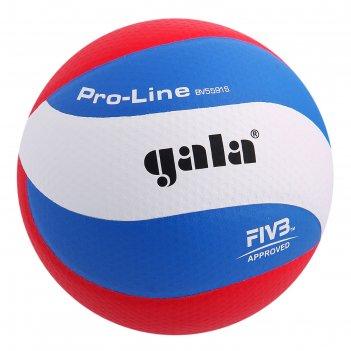 Мяч волейбольный gala pro-line 10 fivb, р.5, бело-голубой-красный