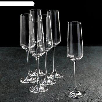 Набор бокалов для шампанского 270 мл flute glass, 6 шт