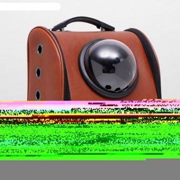 Рюкзак для переноски животных с окном для обзора элеганс, 32 х 18 х 37 см,