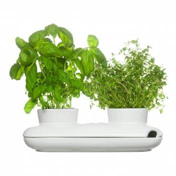 Sagaform горшок для растений дуэт kitchen