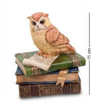 Ws-719 шкатулка сова на книгах