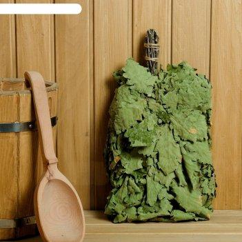 Веник для бани из кавказского дуба, в индивидуальной упаковке