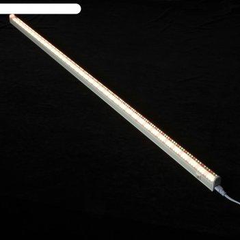 Светильник для растений светодиодный фитлето, 30вт, 1150мм., ip40, 220в, с