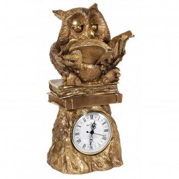 Часы умная сова