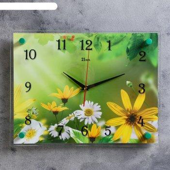Часы настенные, серия: цветы, ромашки, 30х40 см