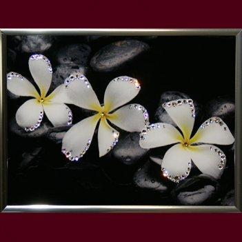 Картина сваровски - белые цветы