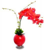 Lp-02 орхидея в вазе с led-подсветкой