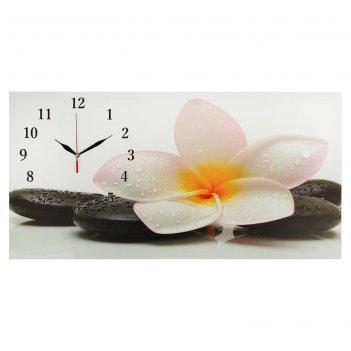 Часы настенные на холсте белый цветок на камнях, 40х76 см  микс