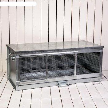 Брудер для цыплят, 100 x 40 x 45 см, с поддоном, с патроном под лампу, мет