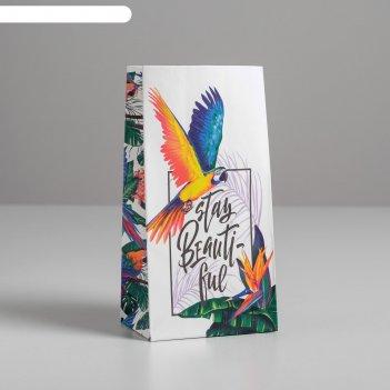 Пакет подарочный без ручек stay beautiful, 10 x 19.5 x 7 см