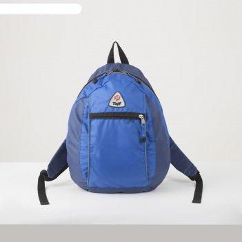 Рюкзак тур mist, 21 л, отд на молнии, н/карман, синий
