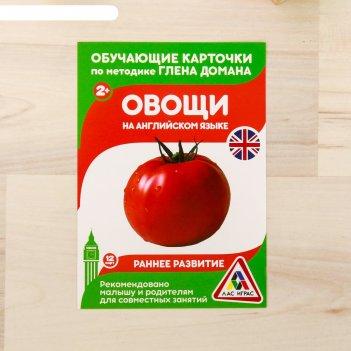Обучающие карточки по методике г. домана овощи на английском языке