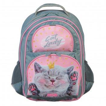 Рюкзак школьный с эргономичной спинкой, calligrata, 36 х 23 х 13, «кот», с
