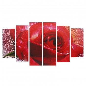 Модульная картина на подрамнике роза, 2 — 25x57,5, 2 — 25x74,5, 2 — 25x84,