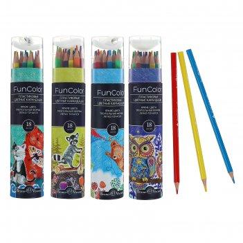 Карандаши цветные 18 цветов funcolor, пластиковые, трёхгранные, в картонно