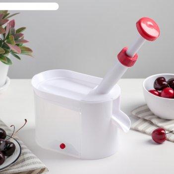 Машинка для удаления косточек из вишни вишневый сад