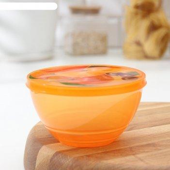 Контейнер пищевой 500 мл сочный цитрус, цвета микс