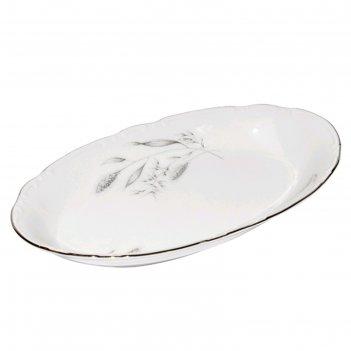Блюдо овальное 21 см, constance, декор серебряные колосья, отводка платина
