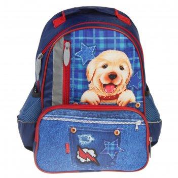 Рюкзак школьный с эргономичной спинкой, calligrata, 37 х 26 х 13, «щенок н