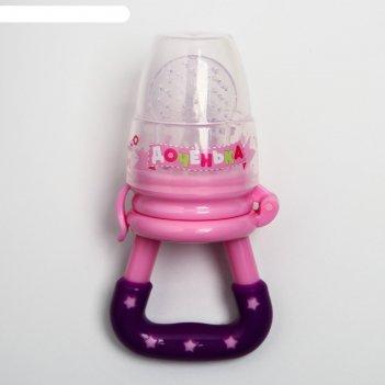 Ниблер «доченька», с силиконовой сеточкой, цвет розовый