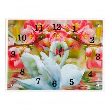 Часы настенные, серия: животный мир, лебеди и розовые цветы, 30х40  см, ми