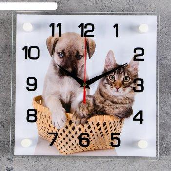 Часы настенные щенок с котенком