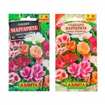 Семена цветов годеция маргарита, смесь окрасок, о, 0,2 г
