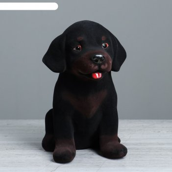 Копилка собака ротвейлер флок (1сорт)