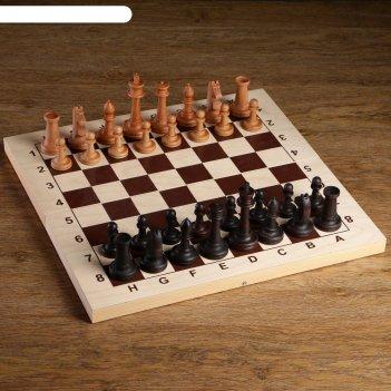 Шахматные фигуры российские, утяжеленные (король h=10.5 см, пешка h=5.2 см