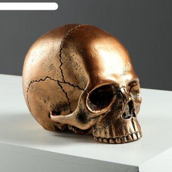 Копилка череп №3 медь